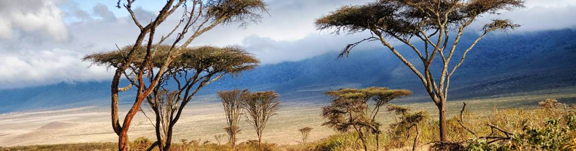 Location camping-car en Tanzanie